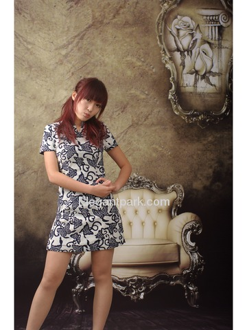 White Butterfly Indigo Printed Cotton Cheongsam Dress